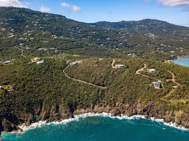 17-5F St. Peter Lns, St. Thomas, VI 00802 (MLS #19-1979) :: Coldwell Banker Stout Realty