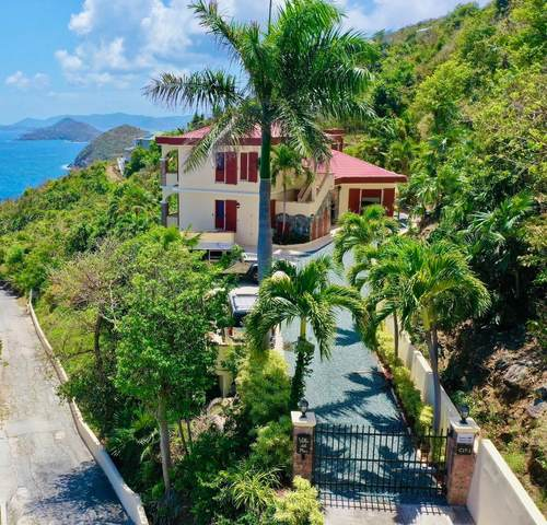 C-17-1 Lovenlund Gns, St. Thomas, VI 00802 (MLS #20-508) :: Coldwell Banker Stout Realty