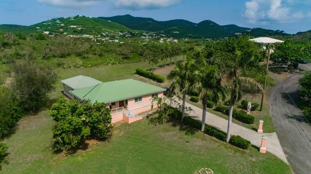 91 Southgate Farm Ea, St. Croix, VI 00820 (MLS #20-998) :: Coldwell Banker Stout Realty