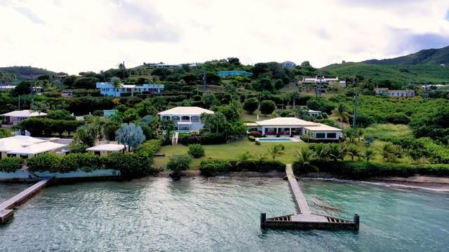 5i Cotton Valley Eb, St. Croix, VI 00820 (MLS #21-1514) :: Hanley Team | Farchette & Hanley Real Estate