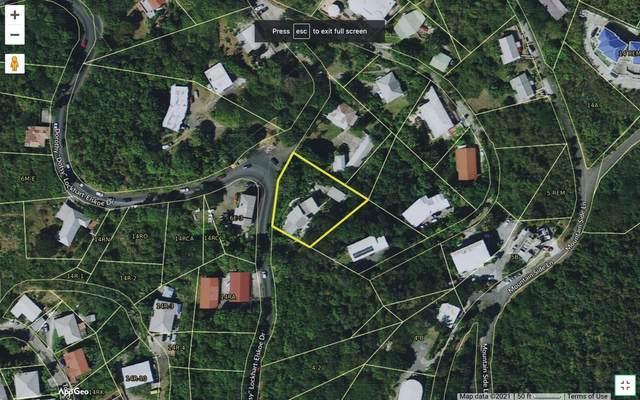 24 Thomas New, St. Thomas, VI 00802 (MLS #21-959) :: Hanley Team   Farchette & Hanley Real Estate