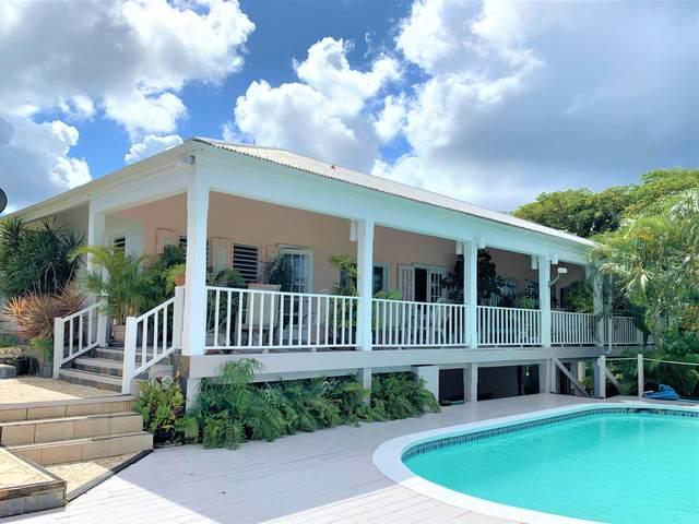 22 River Pr, St. Croix, VI 00850 (MLS #18-1855) :: Hanley Team | Farchette & Hanley Real Estate
