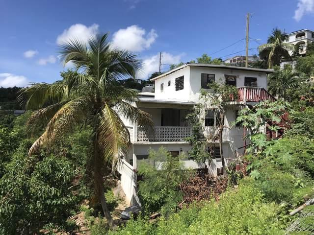 394-239 Anna's Retreat New, St. Thomas, VI 00802 (MLS #19-1446) :: Hanley Team | Farchette & Hanley Real Estate