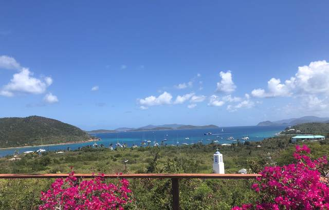 9-37 Nazareth Rh, St. Thomas, VI 00802 (MLS #20-939) :: Hanley Team | Farchette & Hanley Real Estate
