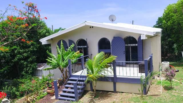 12-2 Contant Ss, St. Thomas, VI 00802 (MLS #21-927) :: Hanley Team   Farchette & Hanley Real Estate