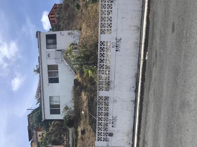 394-398 Anna's Retreat New, St. Thomas, VI 00802 (MLS #19-852) :: Hanley Team | Farchette & Hanley Real Estate