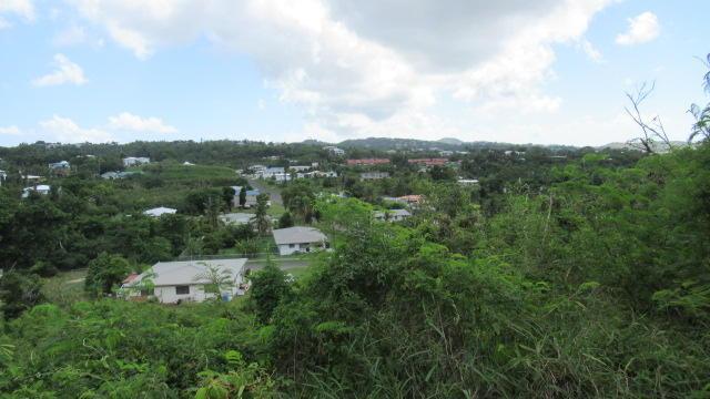 752 Strawberry Hill Qu, St. Croix, VI 00820 (MLS #18-1440) :: Hanley Team | Farchette & Hanley Real Estate