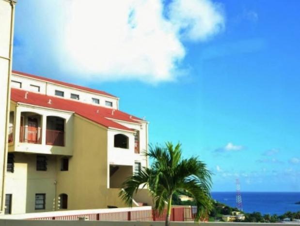 704 Altona Kps, St. Thomas, VI 00802 (MLS #18-147) :: Hanley Team | Farchette & Hanley Real Estate
