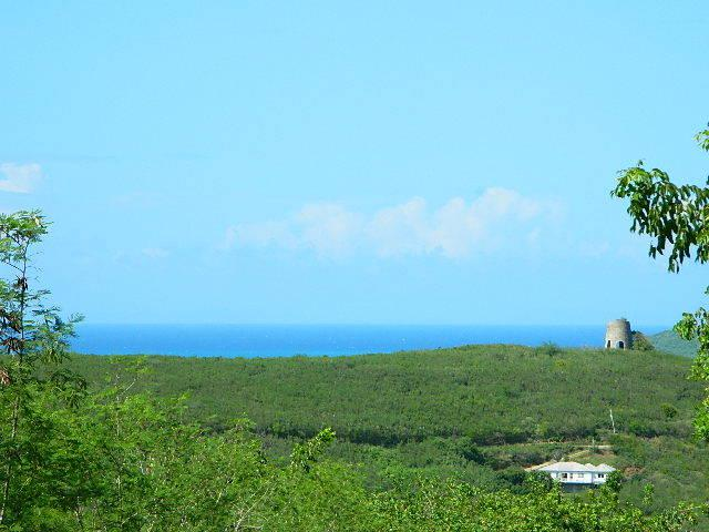 89 Hope & Carton Hill Eb, St. Croix, VI 00820 (MLS #18-1621) :: Coldwell Banker Stout Realty