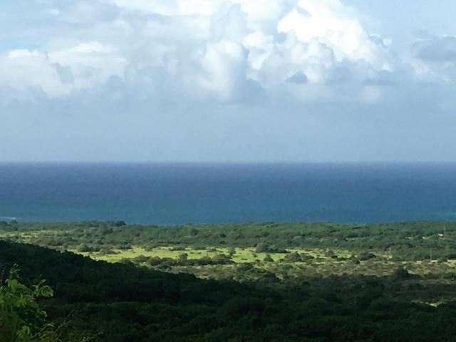 165 Bugby Hole Co, St. Croix, VI 00820 (MLS #18-465) :: Hanley Team | Farchette & Hanley Real Estate