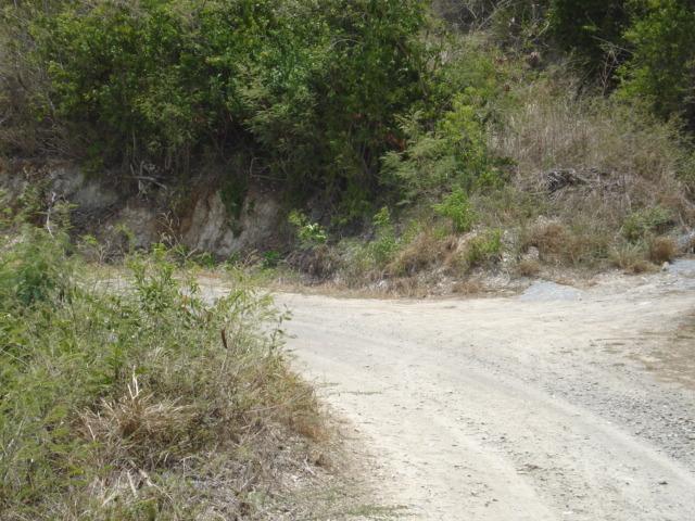 95 Cotton Valley Eb, St. Croix, VI 00820 (MLS #19-1147) :: Hanley Team | Farchette & Hanley Real Estate