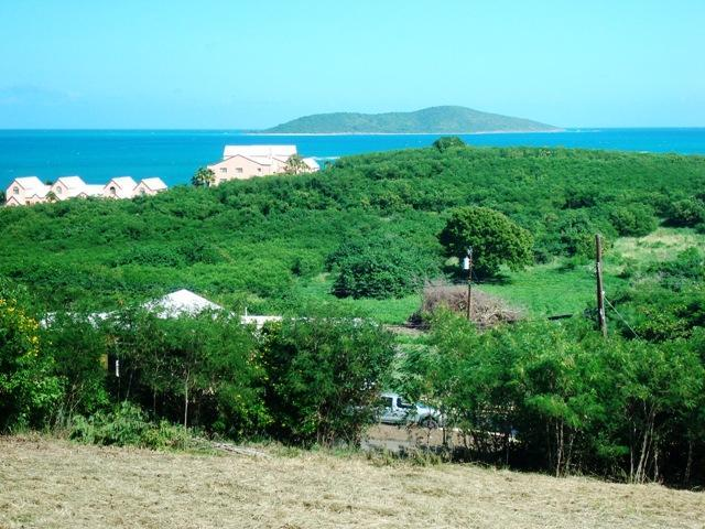 15-A Green Cay Ea - Photo 1
