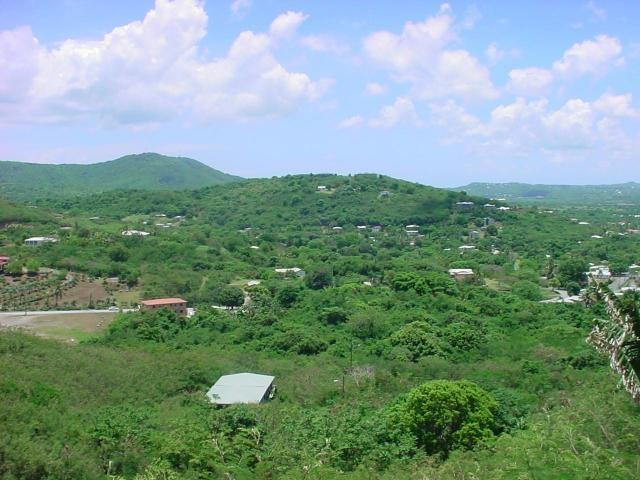 39 St. George Pr, St. Croix, VI 00840 (MLS #19-125) :: Hanley Team | Farchette & Hanley Real Estate