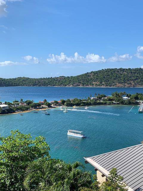 8 Smith Bay Ee, St. Thomas, VI 00802 (MLS #19-1312) :: Coldwell Banker Stout Realty