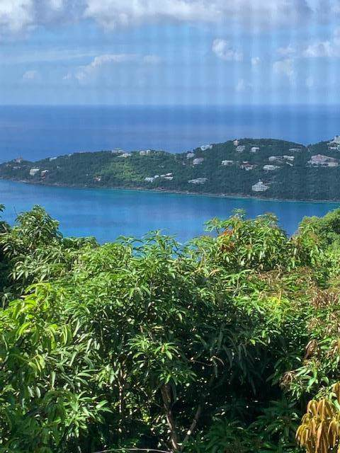 6F Misgunst Gns, St. Thomas, VI 00802 (MLS #19-1370) :: Coldwell Banker Stout Realty