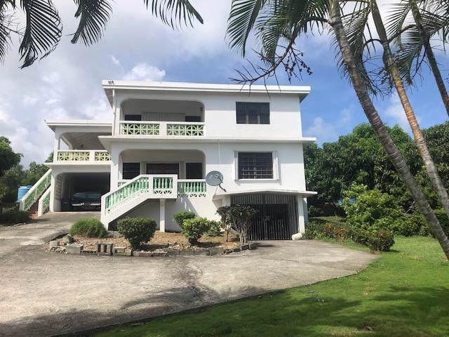 38 Hermon Hill Co, St. Croix, VI 00820 (MLS #19-1431) :: Hanley Team | Farchette & Hanley Real Estate