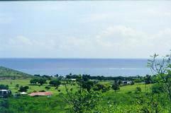 24 Catherine's Hope Eb, St. Croix, VI 00820 (MLS #19-1571) :: Hanley Team | Farchette & Hanley Real Estate