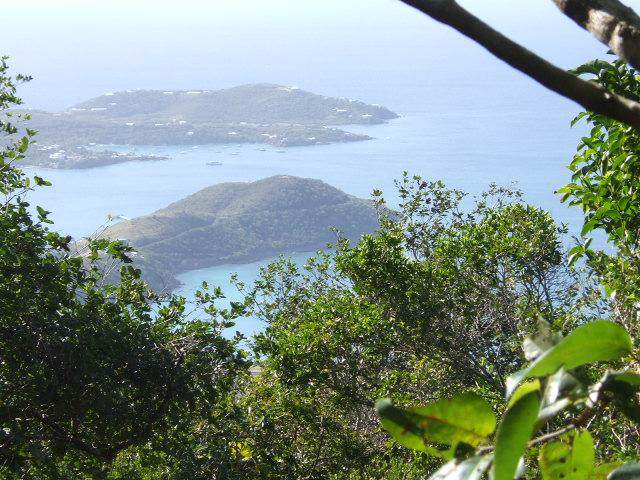 2Bc Crown & Hawk Ss, St. Thomas, VI 00802 (MLS #19-1579) :: Coldwell Banker Stout Realty