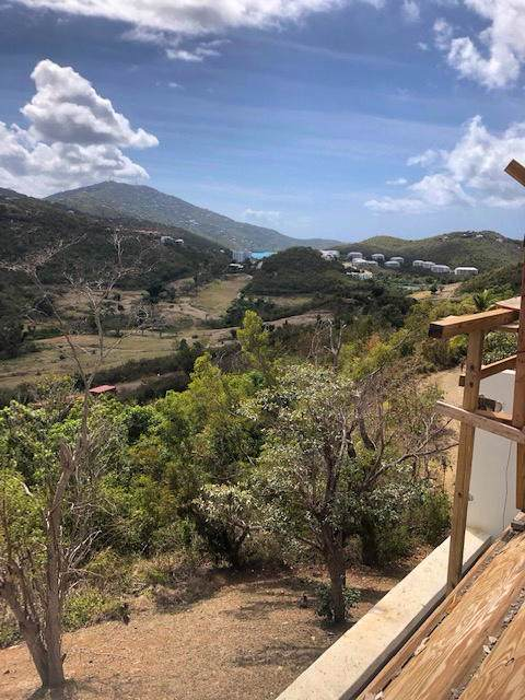 315U Lovenlund Gns, St. Thomas, VI 00802 (MLS #19-1620) :: Hanley Team | Farchette & Hanley Real Estate