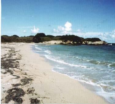 78,79, etc Cane We, St. Croix, VI 00820 (MLS #19-1705) :: Hanley Team   Farchette & Hanley Real Estate