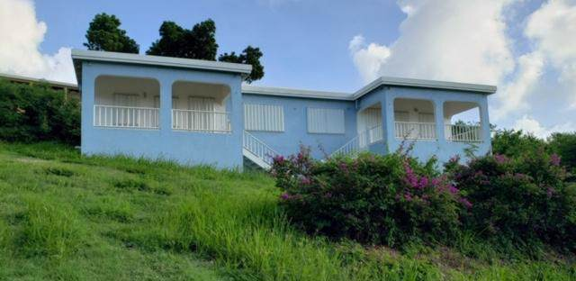 337 Cotton Valley Eb, St. Croix, VI 00820 (MLS #19-1921) :: Coldwell Banker Stout Realty