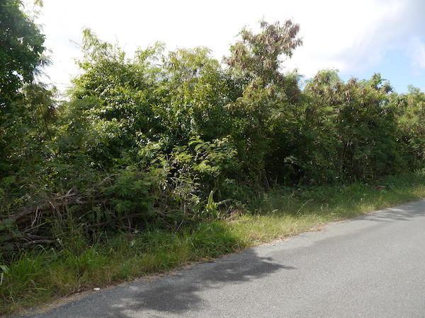 185 Mary's Fancy Qu, St. Croix, VI 00820 (MLS #19-203) :: Hanley Team | Farchette & Hanley Real Estate
