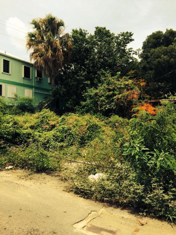 55A Prindsens Gade Ki, St. Thomas, VI 00802 (MLS #19-646) :: Hanley Team | Farchette & Hanley Real Estate