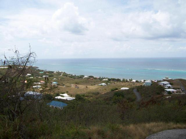 189 Cotton Valley Eb, St. Croix, VI 00820 (MLS #19-658) :: The Boulger Team @ Calabash Real Estate