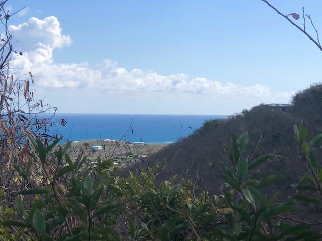 72 Solitude Eb, St. Croix, VI 00820 (MLS #19-717) :: The Boulger Team @ Calabash Real Estate