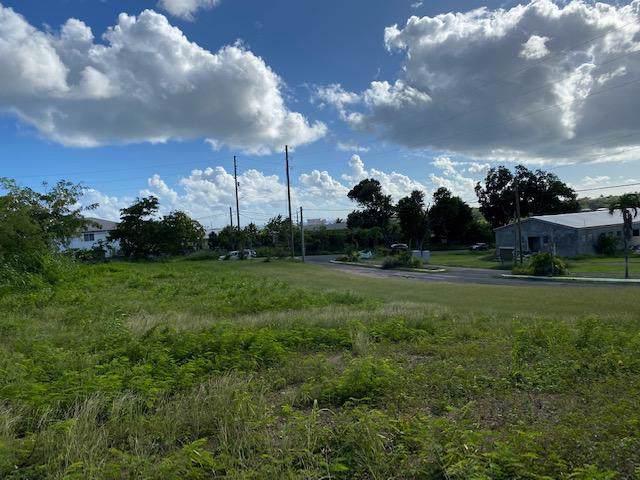 Rem 10 La Reine Ki, St. Croix, VI 00820 (MLS #20-113) :: Hanley Team | Farchette & Hanley Real Estate