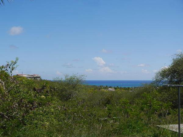 446 Work & Rest Co, St. Croix, VI 00820 (MLS #20-1482) :: Coldwell Banker Stout Realty