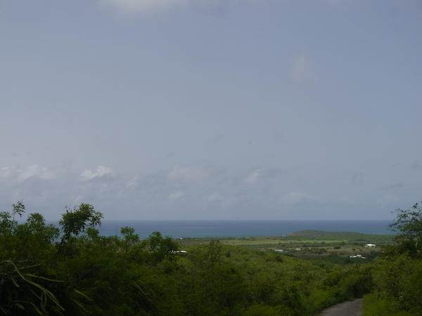 78 Bugby Hole Co, St. Croix, VI 00820 (MLS #20-1485) :: Coldwell Banker Stout Realty