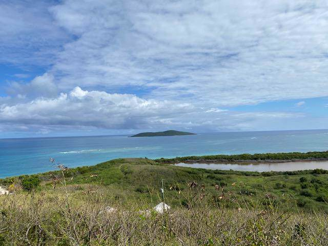106 Green Cay Ea, St. Croix, VI 00820 (MLS #20-150) :: The Boulger Team @ Calabash Real Estate