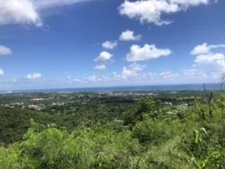 89 Union & Mt. Wash Ea, St. Croix, VI 00820 (MLS #20-1773) :: Coldwell Banker Stout Realty