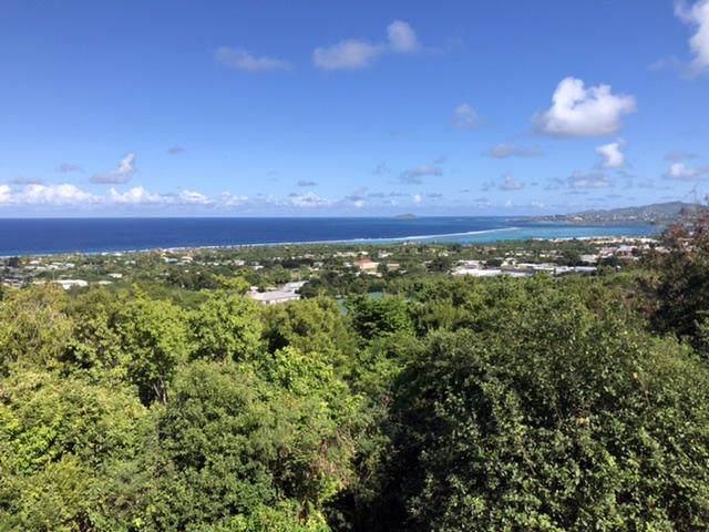 81-B La Grande Prince Co, St. Croix, VI 00820 (MLS #20-2) :: Hanley Team | Farchette & Hanley Real Estate