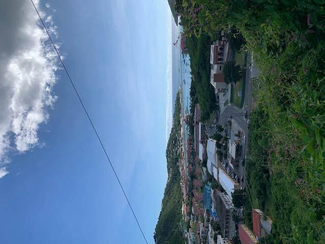 D-16, D-17 Ross New, St. Thomas, VI 00802 (MLS #20-2100) :: The Boulger Team @ Calabash Real Estate