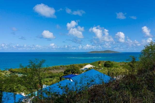 72 Green Cay Ea, St. Croix, VI 00820 (MLS #20-347) :: Hanley Team | Farchette & Hanley Real Estate