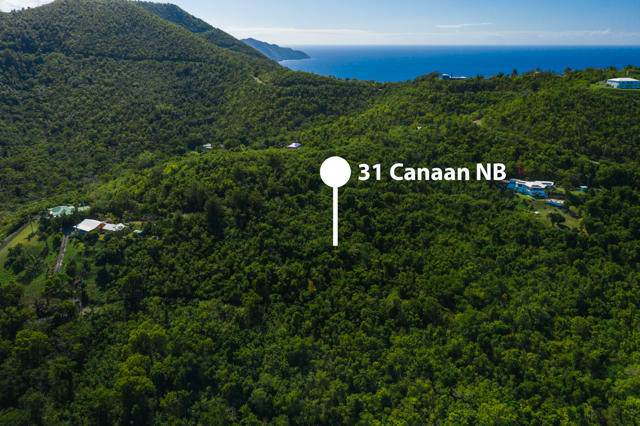 31 Canaan Nb - Photo 1