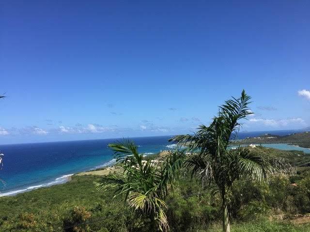101 & 102 Concordia Nb, St. Croix, VI 00820 (MLS #21-104) :: Hanley Team | Farchette & Hanley Real Estate