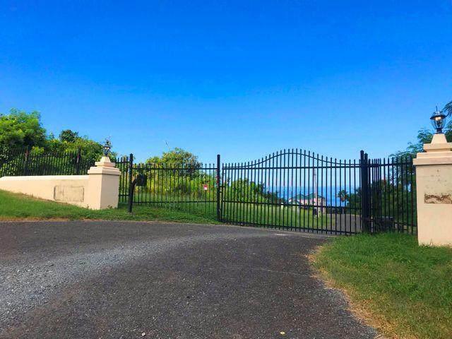 4 Prosperity Nb, St. Croix, VI 00000 (MLS #21-1055) :: Hanley Team | Farchette & Hanley Real Estate
