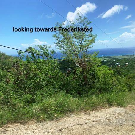 6H Brooks Hill We, St. Croix, VI 00840 (MLS #21-1365) :: Coldwell Banker Stout Realty