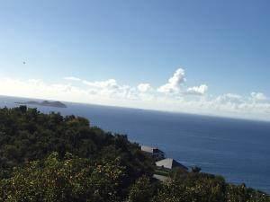4-38 Botany Bay We, St. Thomas, VI 00802 (MLS #21-1575) :: Coldwell Banker Stout Realty
