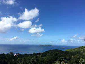 4-39 Botany Bay We, St. Thomas, VI 00802 (MLS #21-285) :: The Boulger Team @ Calabash Real Estate