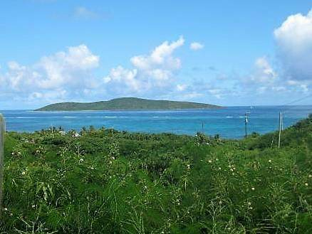 29H & 29 North Slob Eb, St. Croix, VI 00820 (MLS #21-374) :: The Boulger Team @ Calabash Real Estate