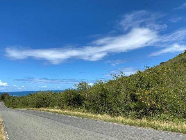 30 North Grapetree Eb, St. Croix, VI 00820 (MLS #21-706) :: The Boulger Team @ Calabash Real Estate