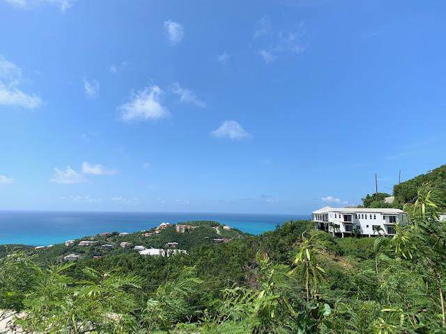 61-50 Bolongo Fb, St. Thomas, VI 00802 (MLS #19-1546) :: Coldwell Banker Stout Realty