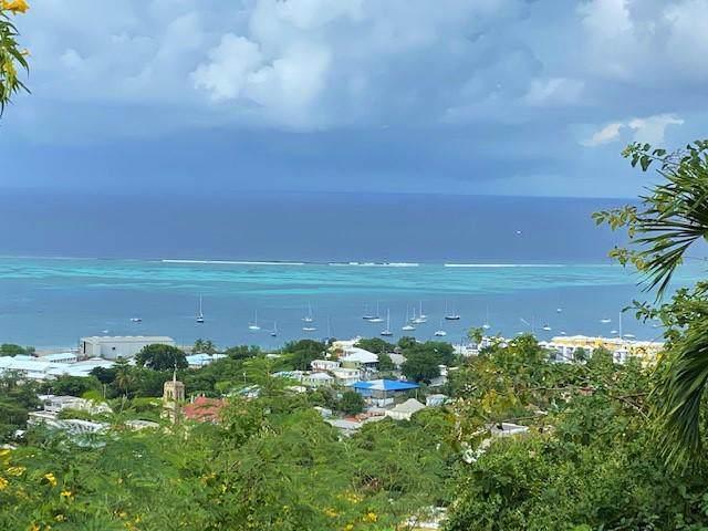 25 A,B,C Contentment Co, St. Croix, VI 00820 (MLS #19-1809) :: Hanley Team | Farchette & Hanley Real Estate