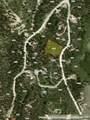 275 Mine Dump Road - Photo 8
