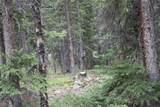 TBD Timberline Trail - Photo 4