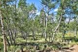 55 Bear Gulch Way - Photo 6